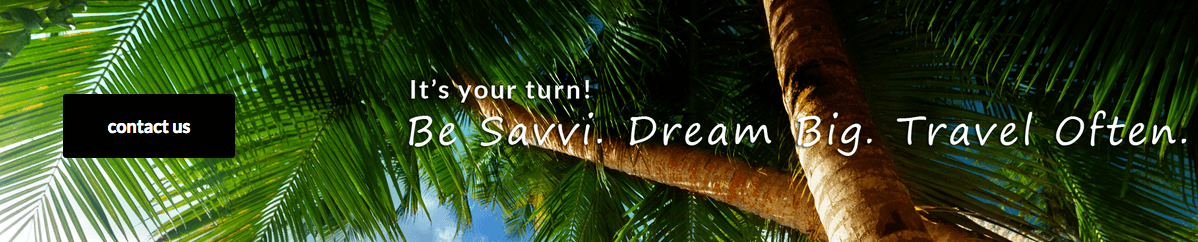 Travel Savvi Call To Action - Contact Us